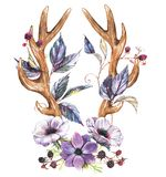 Anemone flowers and antlers. Beautiful illustration with the watercolor anemone flowers and antlers. Floral composition in boho style - antlers drawing with Stock Illustration