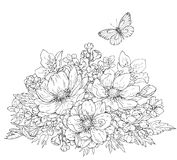 Anemone flowers and butterfly sketch Royalty Free Stock Photo