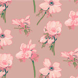 Anemone pattern. Hand-drawing. Flowers royalty free illustration
