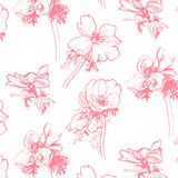Anemone pattern. Hand-drawing Royalty Free Stock Images