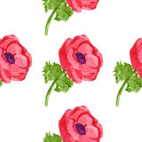 Anemone seamless pattern. Watercolor anemone seamless pattern.hand drawn. eps 8 vector illustration