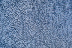 Anemone texture blue Stock Images