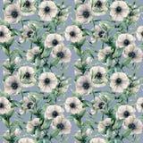 Anemone Watercolor και άνευ ραφής σχέδιο φύλλων Το χέρι χρωμάτισε το άσπρο λουλούδι, τα φύλλα ευκαλύπτων στο μπλε υπόβαθρο Στοκ φωτογραφίες με δικαίωμα ελεύθερης χρήσης