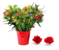 Anemonenblumenstrauß im roten Blumentopf stockfotografie