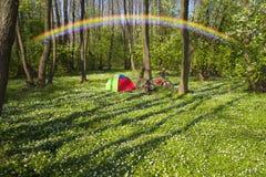 Anemones σε ένα στρατόπεδο Στοκ εικόνα με δικαίωμα ελεύθερης χρήσης