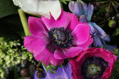 Anemones στη νυφική ρύθμιση Στοκ Εικόνες