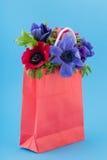 Anemones coloridos do ramalhete foto de stock royalty free