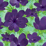 Anemones Not Stem Seamless Pattern. Illustration of purple colors Anemones flowers seamless pattern Royalty Free Stock Photos