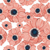 Anemones pattern. Watercolor pattern of pink anemones on white background Stock Image