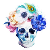 Anemones and scull Royalty Free Stock Photos