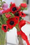 anemony czerwoni Obraz Royalty Free