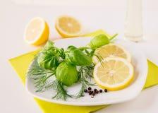 Aneth Basil Dressing de citron photo libre de droits