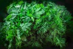 Aneth et persil de vert de texture de fond Photographie stock libre de droits