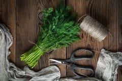 aneth Herbes fraîches de jardin Photographie stock libre de droits