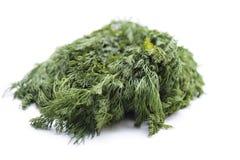 Aneth vert frais Image libre de droits
