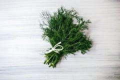 Aneth vert frais sur le fond blanc Photo stock