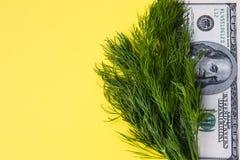 Aneto das hortaliças e 100 dólares no fundo amarelo, espaço da cópia, horizontal Foto de Stock