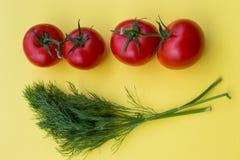 Aneto e quattro pomodori su fondo giallo, orizzontale Fotografia Stock Libera da Diritti