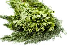 Aneto e salsa verdes frescos do jardim Foto de Stock Royalty Free
