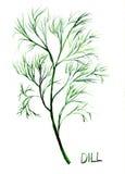 Aneto, ilustração da aguarela Imagens de Stock Royalty Free