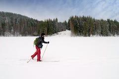 Anfänger-Querland-Skifahrer Stockfoto