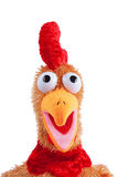 Anface portray of an easter rooster toy. Isolated on white background. Scared expression. Open beak Royalty Free Stock Photo
