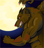 anfalla werewolf royaltyfri illustrationer