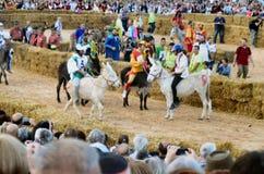 Anfang der Trüffel, die in alba angemessen ist (Cuneo), ist für mehr als 50 Jahre, das Eselrennen gehalten worden Lizenzfreie Stockbilder