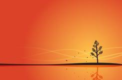 Anfang des Herbstes Stockbild