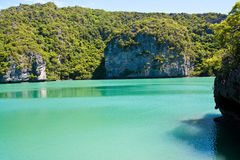 ang鲜绿色海岛池端泰国皮带 库存照片