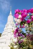 ang doung hm国王penh phnom stupa 库存图片
