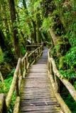 Ang Ka Luang Nature Trail photo libre de droits