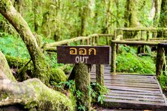 Ang Ka Luang Nature Trail stock image