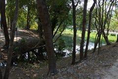 Ang Kaew Reservoir Photos stock