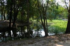 Ang Kaew Reservoir Photo stock