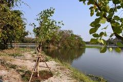 Ang Kaew Reservoir Image stock