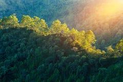 ANG Khang, βουνό ANG Khang, mai Chiang, Ταϊλάνδη Doi Στοκ Εικόνα