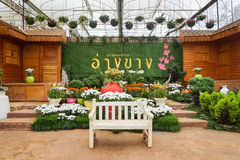 Ang Khang Royal Agricultural Station Garden Royalty Free Stock Photos
