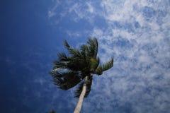 ANG-leren riem de eilanden in Thailand Stock Afbeelding
