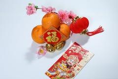 Ang Pao, tanjerinas chinesas das decorações do ano novo, lanterna vermelha, lingotes e 'Fook ' fotografia de stock