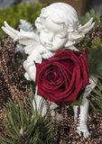 Ange avec une rose rouge Photographie stock libre de droits