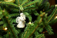 Ange de Noël sur la branche d'arbre de Noël Photos stock