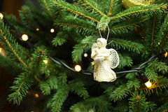 Ange de Noël sur la branche d'arbre de Noël Photographie stock