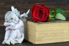 Ange de sommeil, rose de rouge et vieux livre Photos stock
