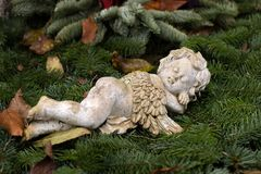 Ange dormant - rêvant Photo stock