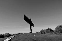 Ange du nord noir et blanc Photographie stock