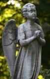 Ange en pierre Images stock