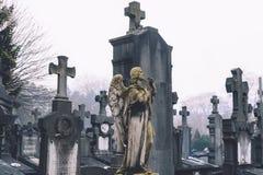 Ange et croix de cimetière à Gand Photographie stock libre de droits