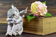 Ange et fleur de sommeil Photos libres de droits