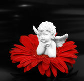 Ange et une fleur photos libres de droits